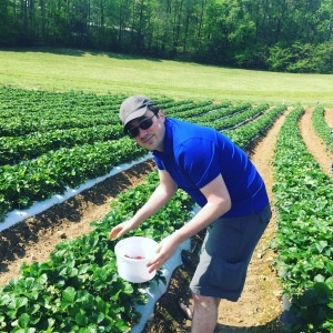 My husband picking strawberries at Mountain Meadows Farm on his birthday.