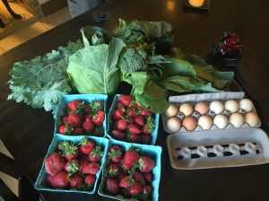 Fruit and veg from our two CSAs