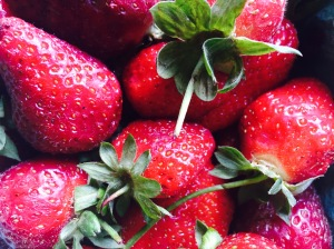 I CAN NOT get enough strawberries this year!